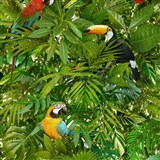 Vinylové tapety na stenu Faux Semblant papagáje