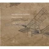 Luxusné vliesové fototapety lietadlo 300 x 270cm