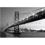 Fototapety San Francisco Skyline, rozmer 366 x 254 cm