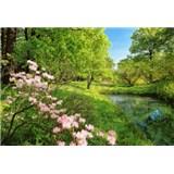 Fototapety Park in the Spring, rozmer 366 x 254 cm