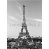 Fototapety La Tour Eiffel, rozmer 183 x 254 cm