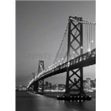 Fototapety San Francisco Skyline, rozmer 183 x 254 cm
