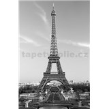 Fototapety Giant Art La Tour Eiffel rozmer 115 x 175 cm