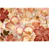 Vliesové fototapety kvety 366 x 254 cm