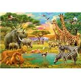 Fototapety Afrika a zvieratá African Animals