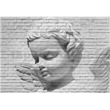 Fototapety anjel Angel Brick Wall, rozmer 366 x 254 cm