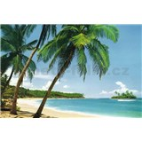 Fototapety Ile Tropicale, rozmer 366 x 254 cm