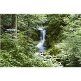 Fototapety Waterfall in Spring, rozmer 366 x 254 cm