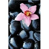 Fototapety Stone Orchid, rozmer 115 x 175 cm