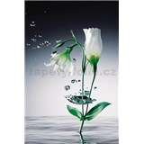 Fototapety Crystal Flower, rozmer 115 x 175 cm
