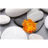 Fototapety A Heart among Stones, rozmer 175 x 115 cm