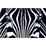 Fototapety Black & White, rozmer 175 x 115 cm - POSLEDNÉ KUSY