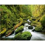 Vliesové fototapety Green Canyon Cascades, rozmer 200 cm x 160 cm