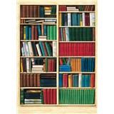 Fototapety Bibliotheque
