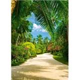 Fototapety Tropical Pathway, rozmer 183 x 254 cm