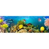 Vliesové fototapety mořský svět Sea Corals, rozmer 366 x 127 cm