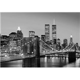 Vliesové fototapety Manhattan Skyline At Night