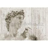 Vliesové fototapety David Street Art, rozmer 366 cm x 254 cm