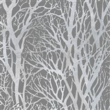 Vliesové tapety na stenu vetvy stromov strieborné na sivom podklade