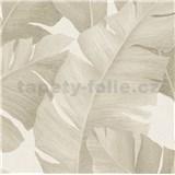 Vliesové tapety na stenu Avalon veľké listy hnedé na krémovom podklade