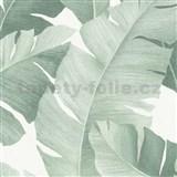 Vliesové tapety na stenu Avalon veľké listy zelené na bielom podklade