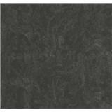 Vliesové tapety na stenu Carat metalická čierna