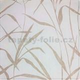 Vliesové tapety na stenu trstina svetlo hnedá na bielom podklade