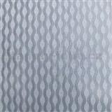 Vliesové tapety Collection 2 vlnovky strieborné s metalickým efektom - POSLEDNÉ KUSY