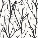 Vliesové tapety na stenu vetve čierne