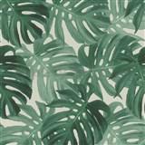 Vliesové tapety na stenu IMPOL Collection listy Monstery zelené