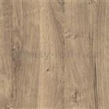 Samolepiaca tapeta dub ribbeck  - 45 cm x 15 m
