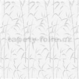 Samolepiace tapety d-c-fix transparentný bambus , metráž, šírka 67,5 cm, návin 15 m,