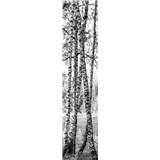 Samolepiace dekoračné pásy brezy rozmer 60 cm x 260 cm