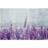 Vliesové fototapety lučné kvety rozmer 375 cm x 250 cm