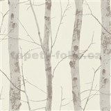 Vliesové tapety na stenu Instawalls kmeny stromov s vetvami hnedé na bielom podklade