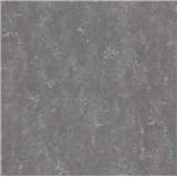 Vliesové tapety na stenu BasiXs imitácia betónu sivá