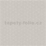 Vliesové tapety na stenu Graphic škandinávsky design svetlo hnedý
