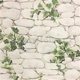 Papierové tapety na stenu kamene s brečtanom