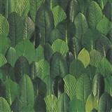Vliesové tapety na stenu Felicita lístky zelené