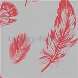 Vliesové tapety na stenu Felicita perie červené na sivom podklade