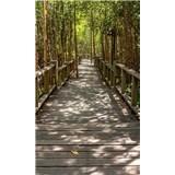Vliesové fototapety mangrovový les rozmer 150 cm x 250 cm