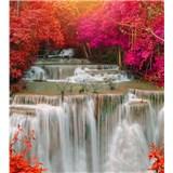 Vliesové fototapety dažďový les rozmer 225 cm x 250 cm