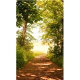 Vliesové fototapety lesná cesta rozmer 150 cm x 250 cm