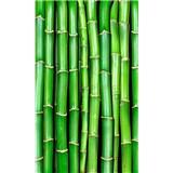 Vliesové fototapety bambus rozmer 150 cm x 250 cm