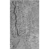 Vliesové fototapety betónový obklad rozmer 150 cm x 250 cm