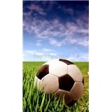 Vliesové fototapety futbalová lopta rozmer 150 cm x 250 cm