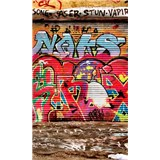 Vliesové fototapety graffiti ulica rozmer 150 cm x 250 cm
