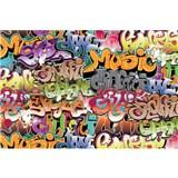 Vliesové fototapety graffiti rozmer 375 cm x 250 cm