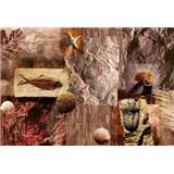 Vliesové fototapety fosílie