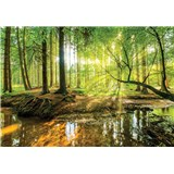 Vliesové fototapety les a potok, rozmer 312 cm x 219 cm